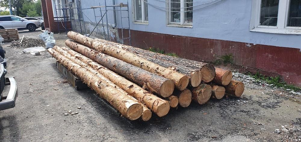 """Кражаимущества, """"черные лесорубы"""", нападение насотрудницу управляющей компании - случаи в Селивановском районе"""