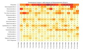 В Селивановском районе рост числа заболевших COVID-19