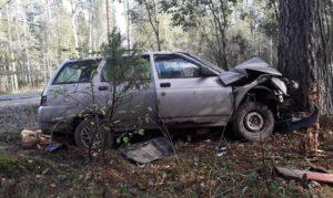 Авария около деревни Николо-Ушна