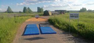 В Селивановском районе зафиксировали очаг заражения свиней африканской чумой